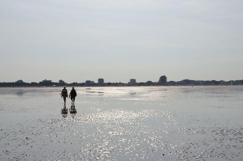 Wattwanderung in Cuxhaven