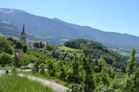 E-Mountainbiketour durch die Weinberge Südtirols