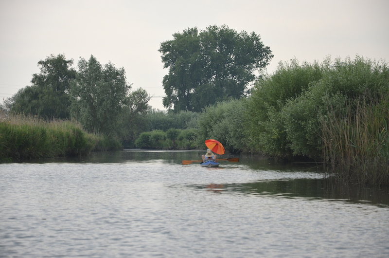 Nationalpark de Biesbosch Holland