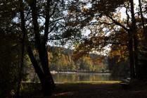 unterwegsunddaheim.de im Herbst