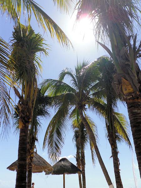 Mexiko Yucatan Playa del Carmen