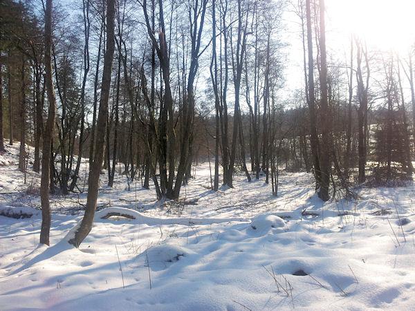 unterwegsunddaheim_winter3