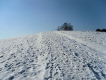 unterwegsunddaheim_winter6
