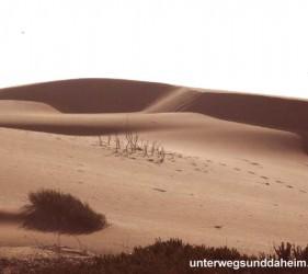 unterwegsunddaheim.de_marokko1