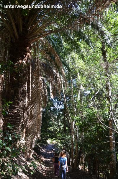 Top Sehenswürdigkeiten von La Gomera entdecken!