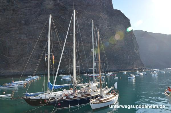 wale & delfine auf La Gomera - unterwegsunddaheim.de