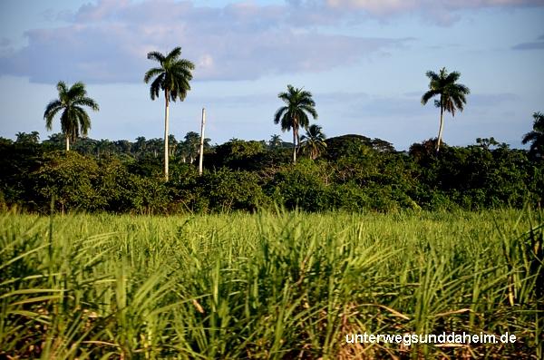 unterwegsunddaheim.de-trinidad-kuba