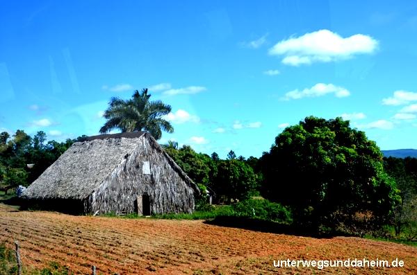Valle de Vinales - Kuba Reiseberichte von unterwegs & daheim