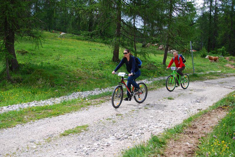 Unterwegs & Daheim in Moena