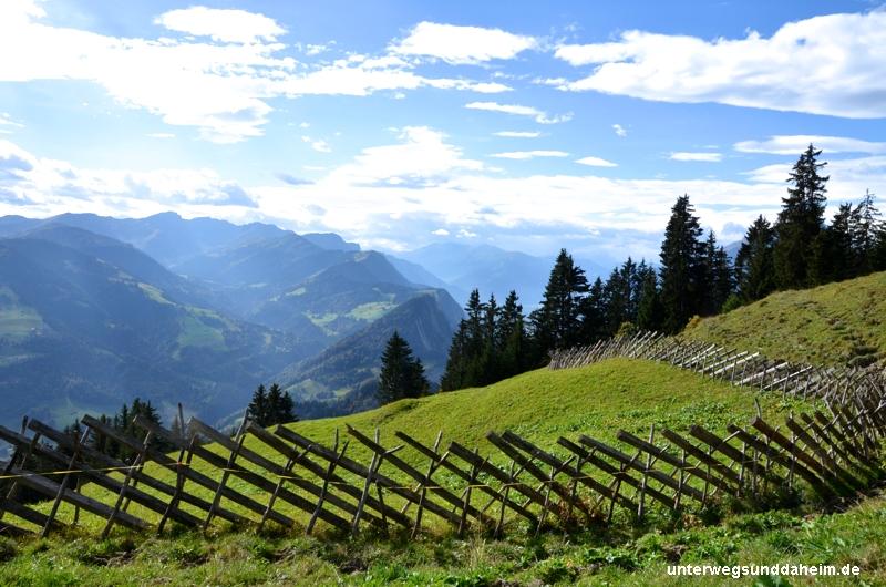 Käse aus den Graubündner Alpen
