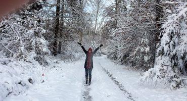 Winter Wunderland