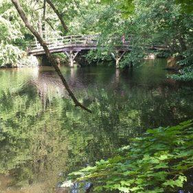 unterwegsunddaheim.de frankfurter Stadtwald