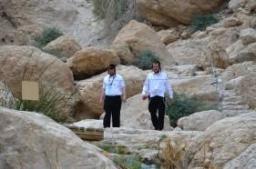 Ein Gedi Wüste Negev
