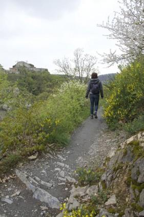 Rotweinwanderweg von Mayschoß nach Rech