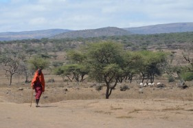 Massai Dorf in der Serengeti