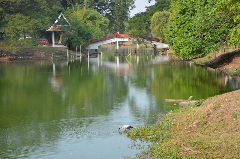 Mit dem Fahrrad durch den Historical Park von Ayutthaya