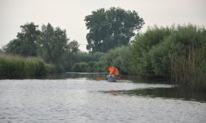 Nationalpark de Biesbosch Holland