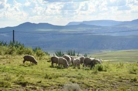 Lesotho - ein Königreich im Himmel