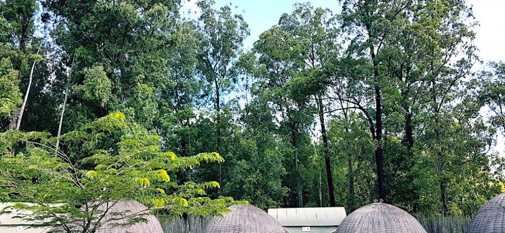 Königreich Eswatini bzw. Swasiland Mlilwane Wildlife Sanctuary
